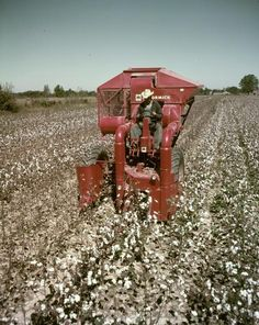 34HM-120 Cotton Picker | Photograph | Wisconsin Historical Society