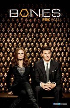Bones - Season 9 (2013)
