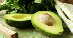 Fantástico! Conheça o que as folhas do abacate pode fazer por si