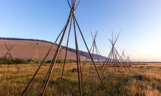 Between Glacier and Yellowstone, Experience Two National Treasures