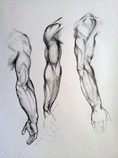 Anatomy Drawing Tutorial Arm Sketches by AdanMGarcia - Arm Drawing, Human Figure Drawing, Figure Sketching, Figure Drawing Reference, Body Drawing, Anatomy Reference, Life Drawing, Anatomy Sketches, Body Sketches