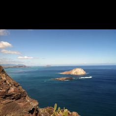Hawaii rabbit island