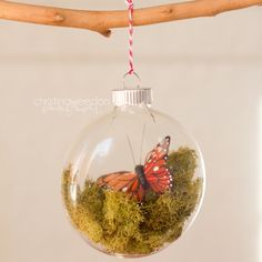 I have made a several ornaments this year and I just found this one...I think I will have to try this one too.  Woodland-Inspired Monarch Butterfly Christmas Ornament