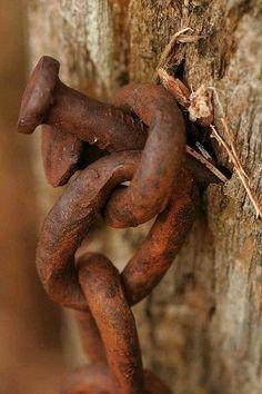 Rusty Chain and Nail Rusted Metal, Metal Art, Rust Never Sleeps, Rust In Peace, Peeling Paint, Under My Skin, Rust Color, Wabi Sabi, Old Things