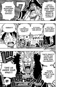One Piece 799 - Page 14