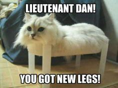 Hahahahaha this made me laugh so hard!  Good ol' Forrest Gump!
