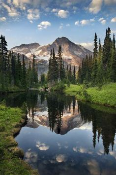 Mount Rainier reflecting in Mirror lakes, Mount Rainier National Park, Washington by Raymond Klass