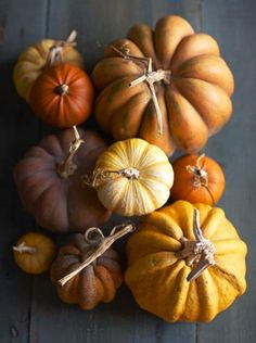 Really...is there anything more beautiful than a collection of heirloom pumpkins? I think not.