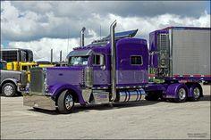 https://flic.kr/p/UiJaHF | Peterbilt Truck | Peterbilt Truck Brian Dremer Trucking Campbellsport, WI 2016 Waupun Truck-N-Show Waupun, Wisconsin