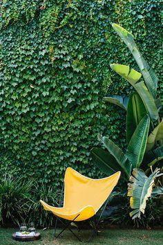 (via Modern Family Garden Care, Modern Garden Design, Landscape Design, Landscape Plans, Ivy Wall, Terrace Garden, Walled Garden, Herb Garden, Butterfly Chair