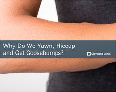 The REAL reason you yawn, hiccup and get goosebumps.