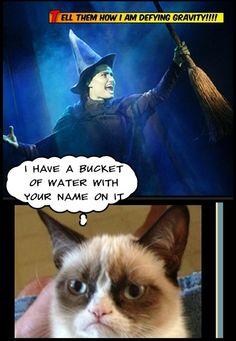 Grumpy cat.....you melt Elphie! I MELT YOU!!!!!!!!