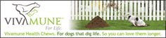 Help protect him from Giardia by keeping his GI system healthy. Can Dogs Eat Apples, Coconut Oil For Dogs, Living With Cats, Homeopathic Remedies, Natural Remedies, Dog Snacks, Service Dogs