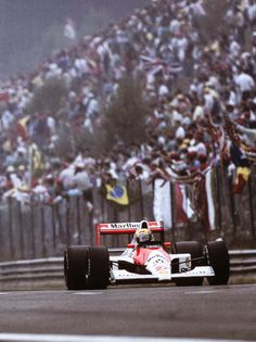 Larissa. 20. Brazil This is a formula one blog especially dedicated to Ayrton Senna, the person who...