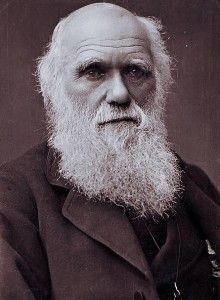 Des informations intéressantes au sujet de Charles Darwin