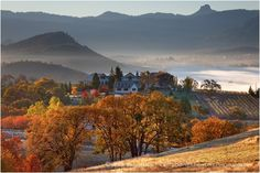 Rogue Valley Vineyards in Fall Stock Image Southern Oregon - Siskiyou Mountain Stock Images - Oregon Stock Images - Stock Photography
