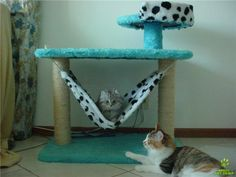 arranhadores para gatos Cat Park, Cat House Diy, Diy Cat Tree, Pet Style, Cat Hammock, Cat Towers, Cat Tunnel, Kitten Love, Felt Cat