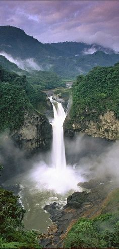 Yasuni National Park in Ecuador