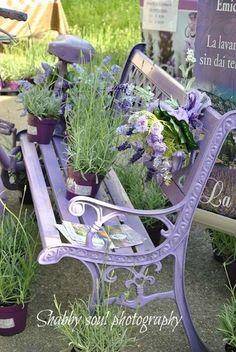 Lavender the plant and lavender the colour on a metal garden bench, wonderfully pretty look with a gorgeous aroma to match . Terrace Garden, Garden Chairs, Garden Furniture, Garden Art, Garden Design, Garden Benches, Garden Painting, Easy Garden, Outdoor Furniture