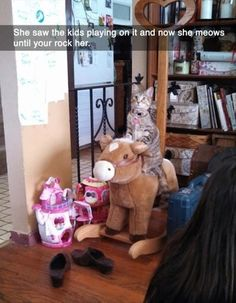 She saw the kids playing on it and now she meows until you rock her. Funny Animal Memes, Cute Funny Animals, Cat Memes, Funny Cute, Cute Cats, Funny Humor, Silly Cats, Adorable Kittens, Super Funny