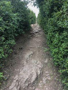 Chemin passe muraille!  #randonnée pédestre #foret #paysage #balisage #marche #orientation #fléchage #déplacement #nature Orientation, Country Roads, Landscape, Nature, Paths, Walking, Drill Bit, Scenery, Naturaleza