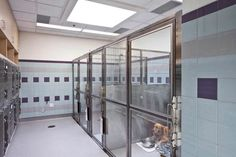 A veterinary hospital with a view - Hospital Design. Great kennel area!