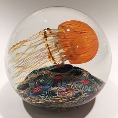Large Richard Satava Art Glass Paperweight Pacific Coast Side Swimmer Jellyfish