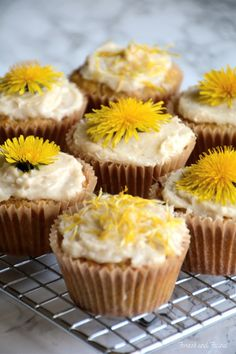 Dandelion and Lemon Paleo Cupcakes - foraging wild dandelions for food - low carb, gluten-free cupcakes recipe http://www.forestandfauna.com/