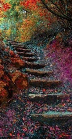 Steps of autumn • photo: Inele on 99px