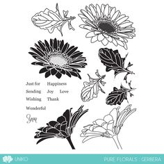 Pure Florals - Gerbera was the first Pure Florals clear stamp set to be released back in July It is now one of the many florals in the series of clear stamp sets, but remains one of the most popular timeless floral designs. Gerber Daisies, Lucky Day, Peace On Earth, My Scrapbook, Scrapbooking, Gerbera, My Stamp, Clear Stamps, Digital Image
