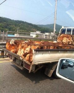 """Either to be used for food, fur, or both. Usually they are severely tortured, as they believe it """"brings out a better flavor in the dog meat"""". Horrid. @koreandogs"""