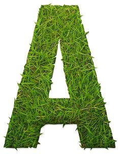 Oh my Alfabetos!: Alfabeto hecho con césped.