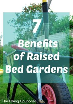 7 Benefits of Raised Bed Gardens. Summer is finally here and it is already time to start planning your garden. Flowers and vegetables. Gardening. The Flying Couponer | Family. Travel. Saving Money.