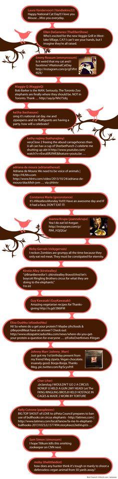 #Vegan & #Cat Tweets