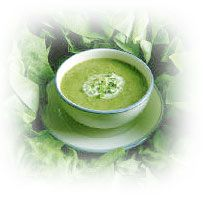 A terrible diet, but I actually really like this soup recipe. Just a big pot of soup filled with vegetables, yum yum