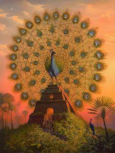 Pássaros e vaidade