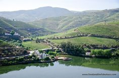 A visit to the Douro Valley in Portugal | by Ishay Govender-Ypma, Food and the Fabulous 10.04.2013 | Photo: DOURO VALLEY