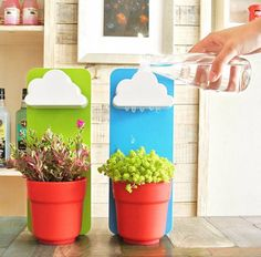 Cloudy Plant Pot | Colorful & Creative Gifts | Witty Novelty
