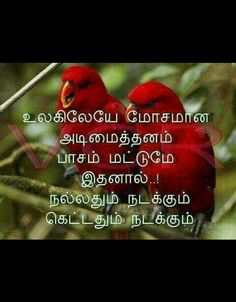87 Best Tamil Quotes Images True Quotes Gold Quotes Golden Quotes