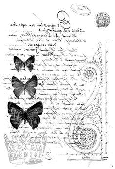 papillons sur fond lettre ancienne