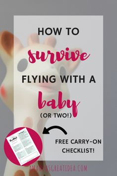 flying with a baby or two? you can do it!! I've made it easy for you and included a free checklist! | flying with babies | flying with twins | flying with baby checklist