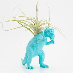 Dinosaur Planter with Air Plant Room Decor, College Dorm Ornament, Plants and Edibles, Turquoise