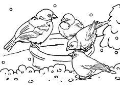 winter birdhouse | ausmalbilder winter | ausmalbilder winter, ausmalbilder und ausmalen