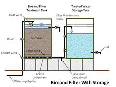 filtering greywater with reed bed system - Google Search