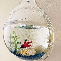 Wall Mount Aquarium #Under-$50 #For-Kids #Gifts-For_Toys-&-Games