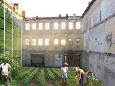 Philadelphia has already implemented an urban kitchen garden policy and many other U.S. cities could benefit from one.