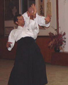 Wagner Bull Sensei Aikido, Dojo, Hapkido