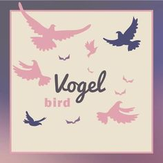 Bird 🐤 - der Vogel  Pl. die Vögel 🐤  #bird #🐤#vogel #vögel #learning #words #deutsch #german #vocabulary #begründung #wortschatz #student #germany #sprachenlernen #english Animal, Learning, Instagram, Home Decor, Learn Languages, Birds, Decoration Home, Room Decor, Studying