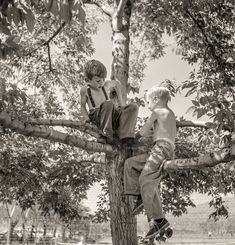 """July 1942. Klamath Falls, Oregon. """"Boys in city park on a Sunday afternoon."""" Photo by Russell Lee for the Office of War Information.  Shorpy Historic Picture Archive"""