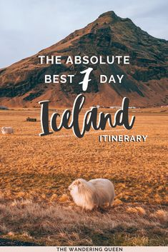 The Absolute Best Iceland Itinerary: 7 days - The Wandering Queen Iceland Travel Tips, Europe Travel Tips, European Travel, Travel Guides, Spain Travel, Mexico Travel, Europe Destinations, Europe Places, Thingvellir National Park